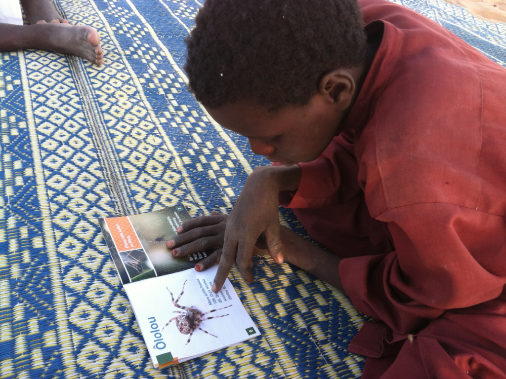 A student learns from the first book in the Dazaga language on insects. With help, Rivers hopes to produce 30 more beautiful and durable books like this one. Photo courtesy of Rivers Camp