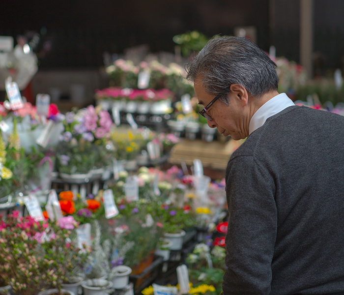 A Japanese man looks at a display of flowers